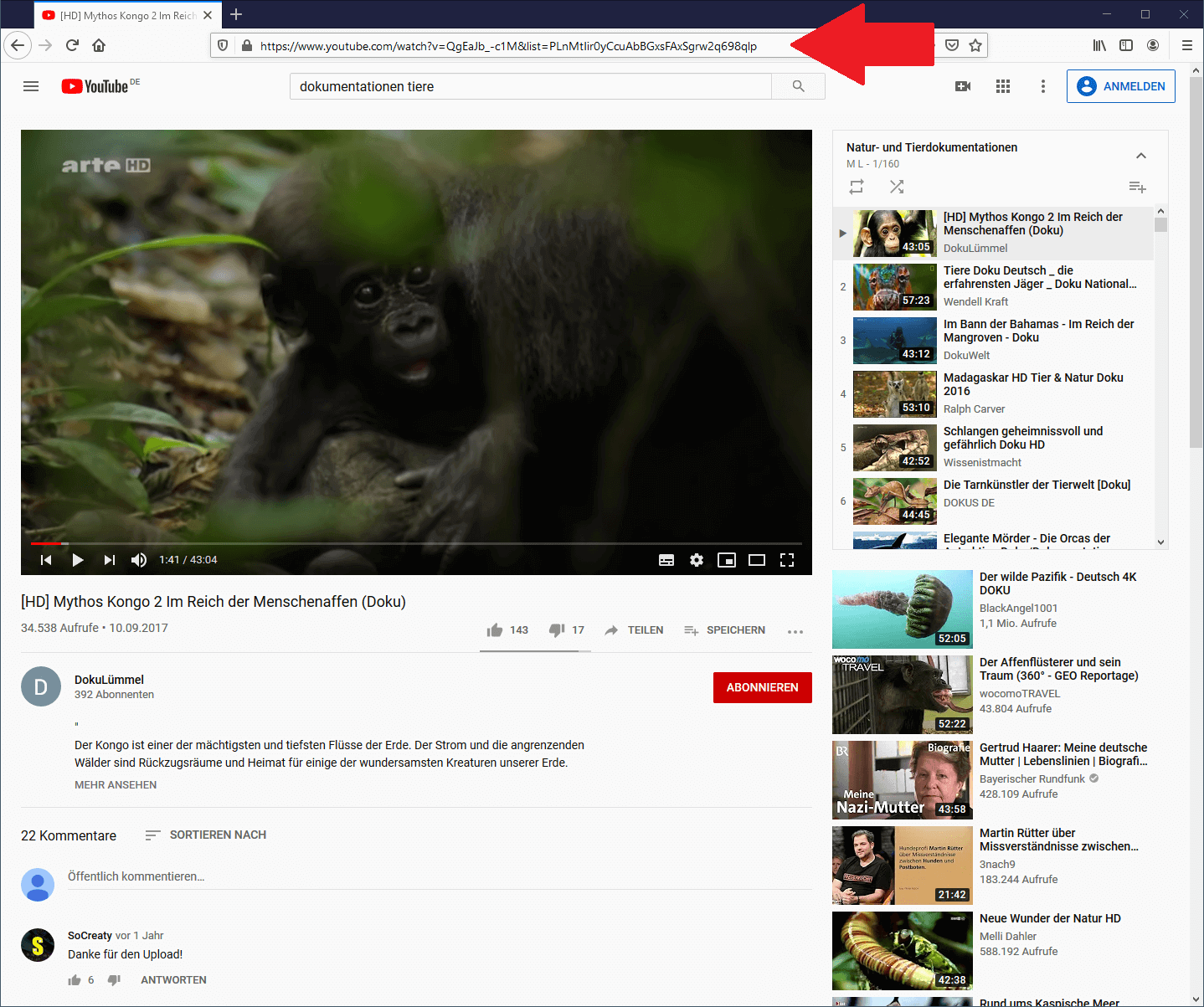 Youtube Playlist downloaden - Playlisten-URL kopieren